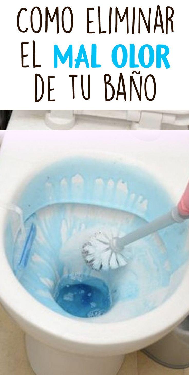 Como eliminar el mal olor de tu baño | Baños, Olor ...