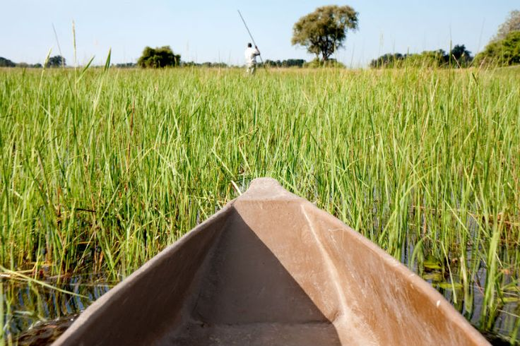 Sail down the Okavango in a traditional Mokore, and sail between the hippos and crocodiles of the delta! http://www.wunderbird.com/safari/safari_rejser_i_de_afrikanske_deltaer