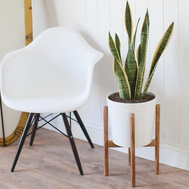 How to Build a Mid-Century Inspired Plant Stand that Looks Like it Belongs in a Dwell Magazine | eHow Home | eHow
