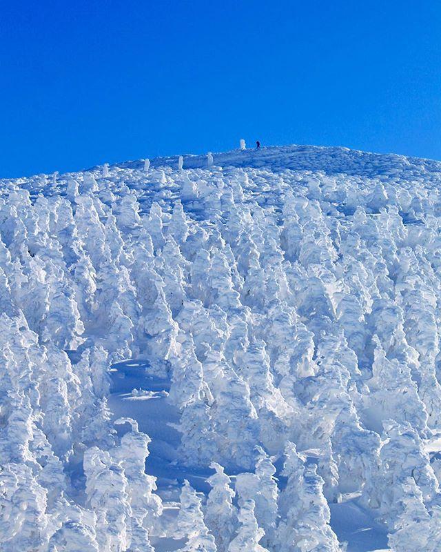 ZAO Ropeway, Zao, Yamagata, Japan, snow, winter, snowmonster