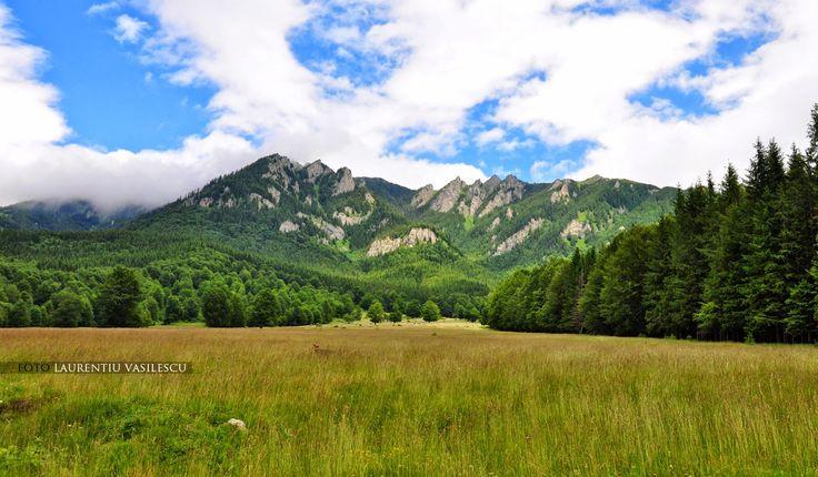 Muntii Ciucas - Romania