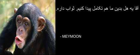 MEYMOON