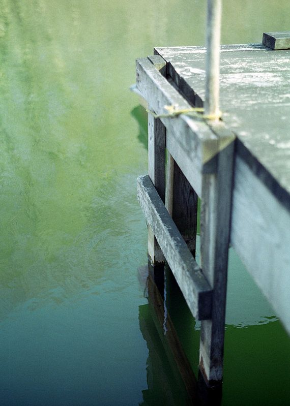 Green pond, dock, ladder - nature photography - water, weathered wood, rippled water reflections, fine art photography - Pond and Ladder