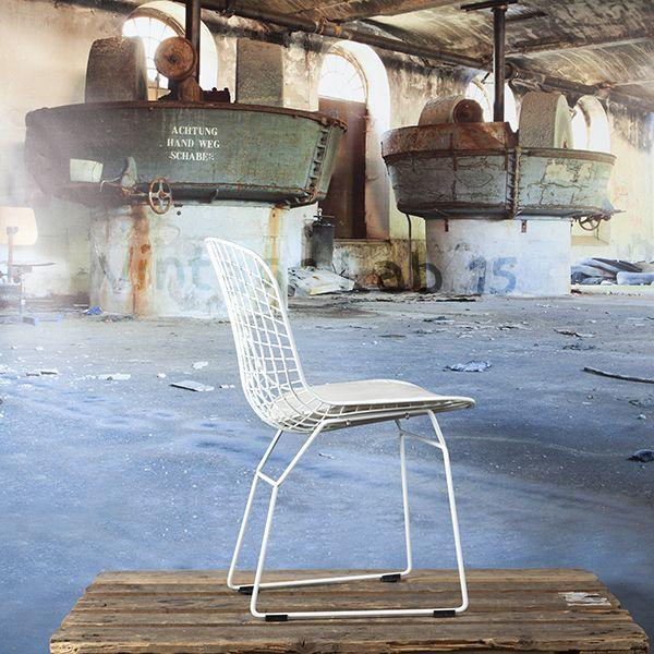 Eetkamerstoelen : Bertoia eetkamerstoel-draadstoel wit met wit kussen - Vintagelab15.com