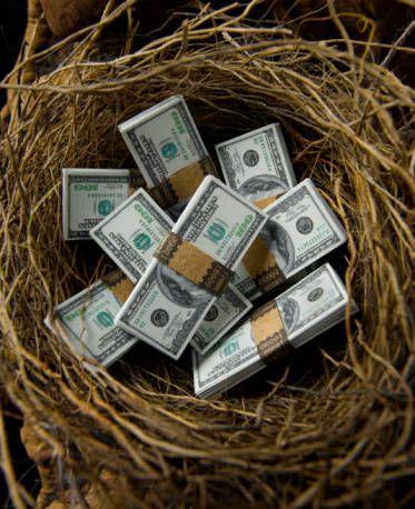 Beginner's Guide to 401(k) Plan Investing