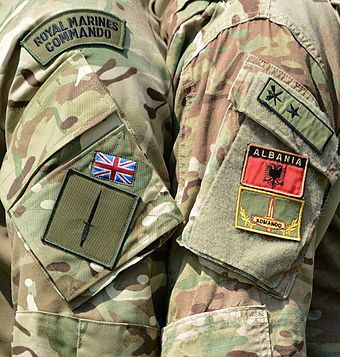 Royal Marine Commandos.. Gives new meaning to being a Royal ❤️❤️