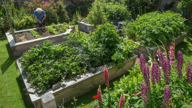 How a new #garden #design has eased the pain of what's been lost