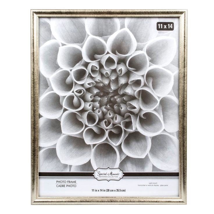 Special Moments Traditional Silver Plastic Picture Frames