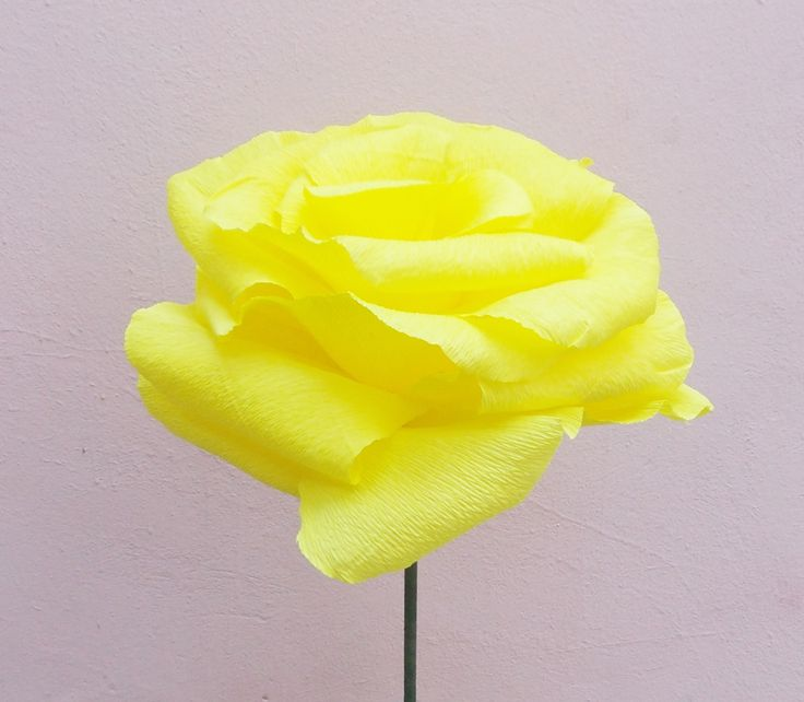 Sweet Yellow Rose (50 LEI la Nunny.sDiary.breslo.ro)