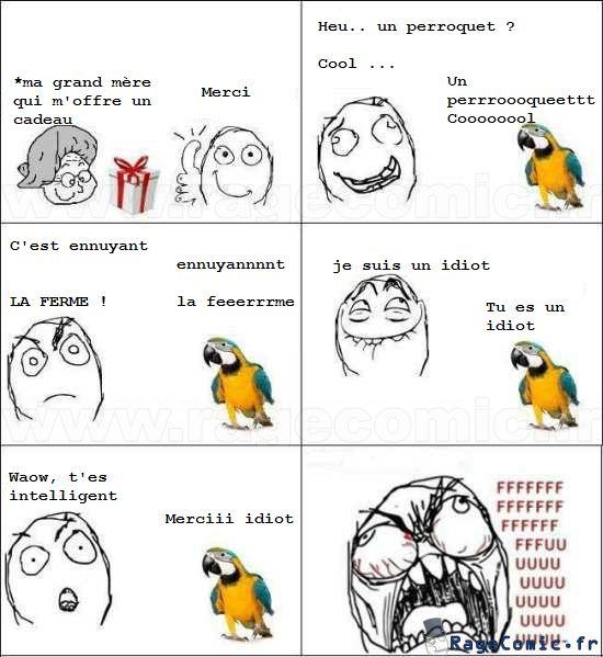 Perroquet très intelligent