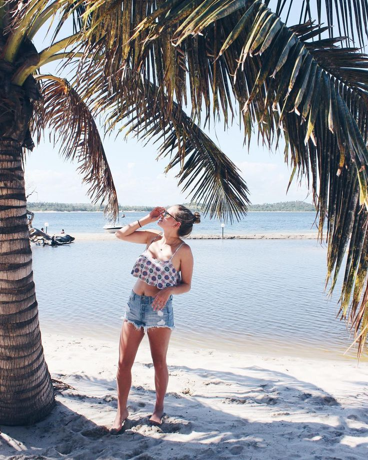 Coconuts falling in Mozambique (@juliefarrell_)