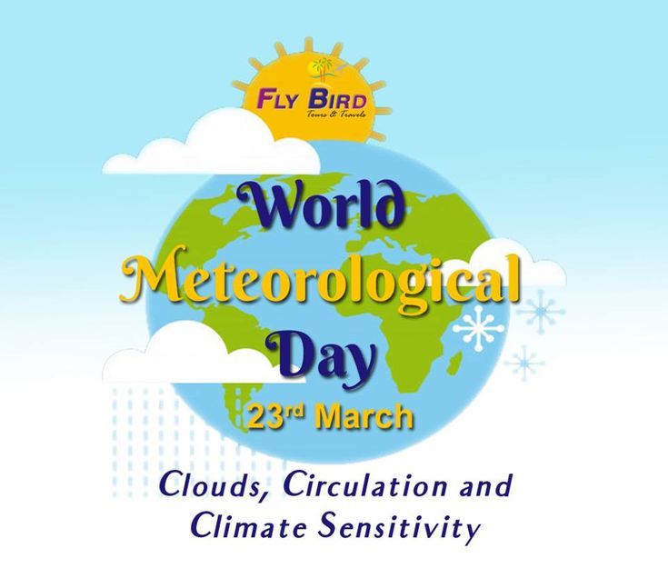23 March World Meteorological Day. Clouds, Circulation and Climate Sensitivity. #clouds #climate #worldMeteorologicalDay #flyBird