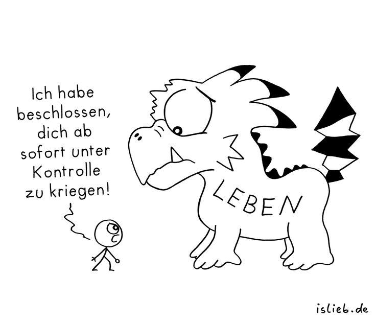 Beschluss. Is lieb? | #leben #vorsatz #beschluss #lustig #islieb