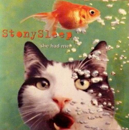 Stony Sleep - She Had Me