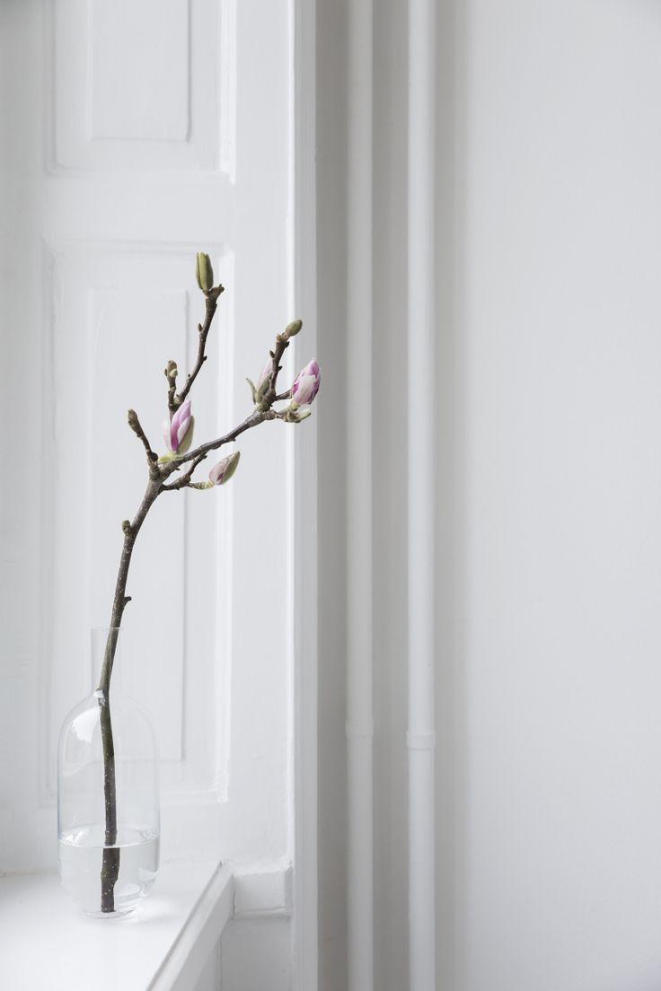 Magnolia stem in a bud vase   Easter decor