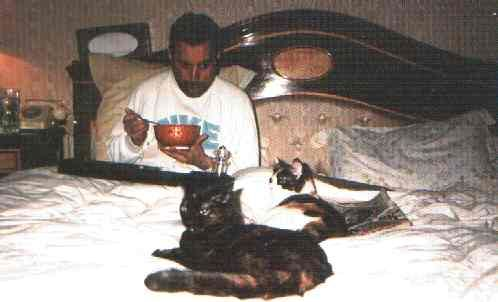 Freddie Mercury and his cats (who look like my tortoiseshells) in bed.