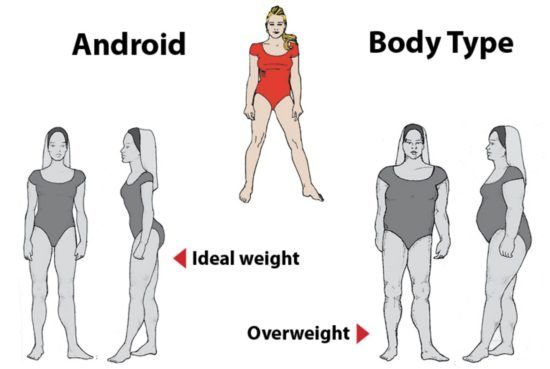my body type to lose weight