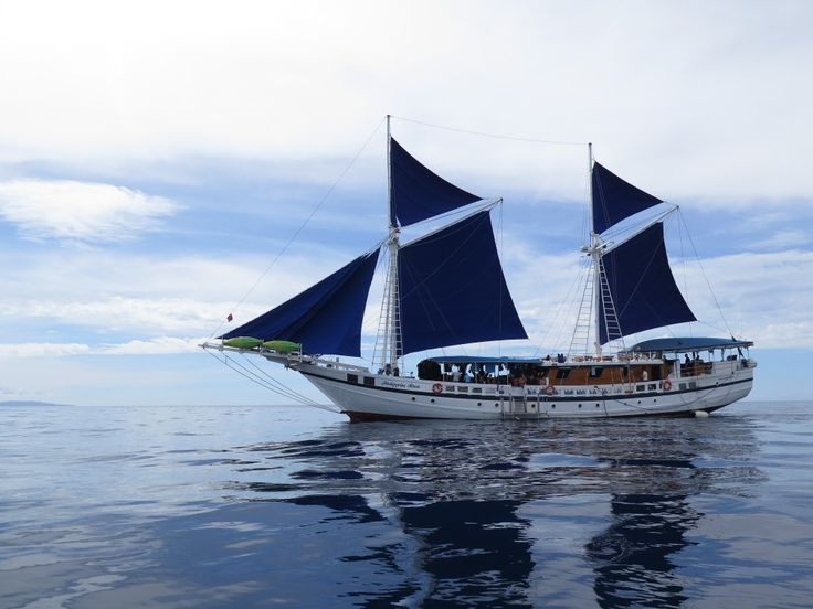 scuba diving liveaboard in the Philippines