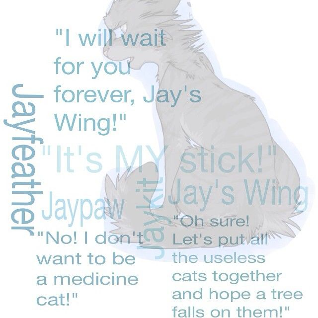 Bring Him Back Quotes: 53 Best Images About Jayfeather On Pinterest