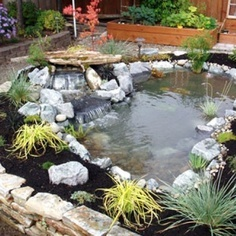16 best images about fish pond sitting area on pinterest for Koi pond builders cape town