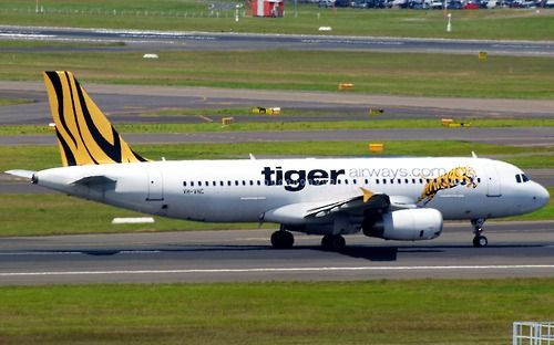 Tiger Airways A320 at Sydney    Type: Airbus A320-232  Registration: VH-VNC  Location: Kingsford Smith International  Date: 02/12/2011