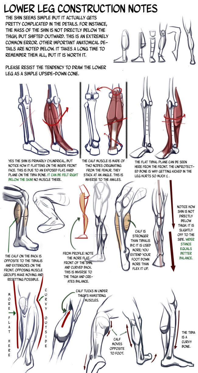 Lower Leg Construction Notes: details we forget by N3M0S1S on DeviantArt
