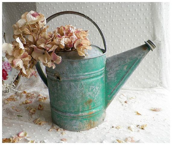 I love old galvanized watering cans