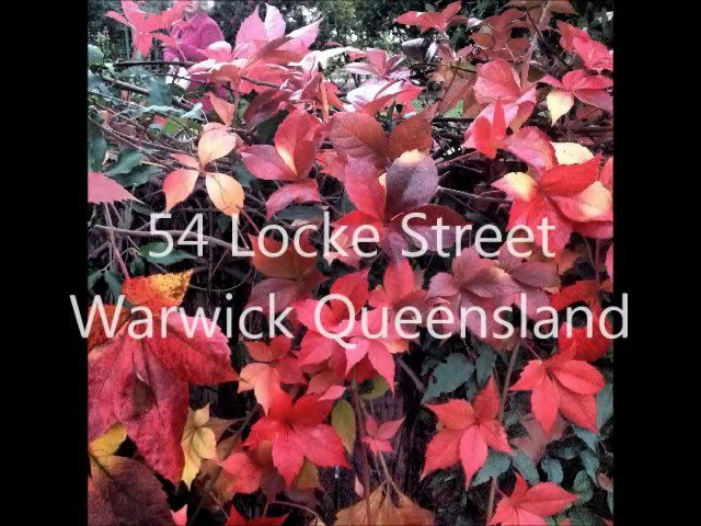 """Built Circa 1908 and formerly known as """"Toorak"""", this gracious family home has had only five owners in over one hundred years. Beautifully framed by century old Camphor Lauren trees in a high profile position in one of Warwick's dress circle locations.  Expansive 3,035 square metre landscaped grounds with a very comfortable residence..."""