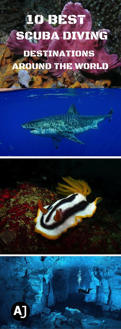 Discover The Best Scuba Diving Destinations From Around The World.