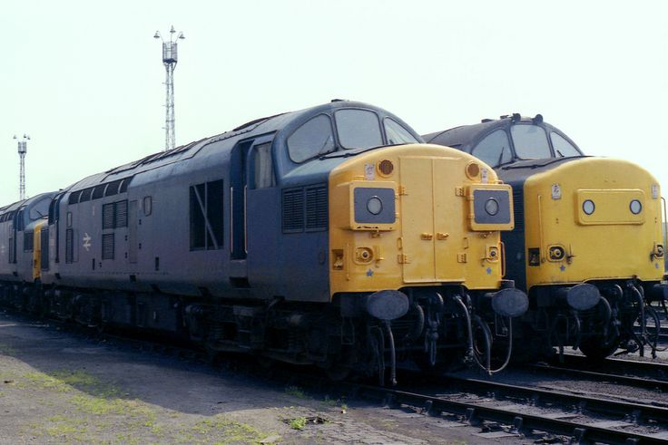 """37055 (D6755), with newly painted front ends, at Stratford TMD on 28th June 1986.  Built by the English Electric Company at Vulcan Foundry, Newton-le-Willows, during 1962 D6755 entered service, allocated to 51L (Thornaby), on the 2nd September of the same year. Various re-allocations followed, though always an Eastern Region loco, and whilst allocated to Stratford was named """"RAIL CELEBRITY"""" at Toton on the 15th November 1985. 37055 finally moved away from the EAstern Region with an…"""