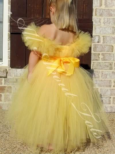 Belle Tutu Dress Costume/Flower Girl Dress