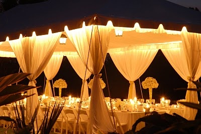 Billowy draping, family style seating at kings tables and Baby's Breath clusters created by Lauren Daversa Events: Wedding Lov, Daversa Events, Style Seats, Lde Friends, Baby Breath, Families Style, Garden Weddings