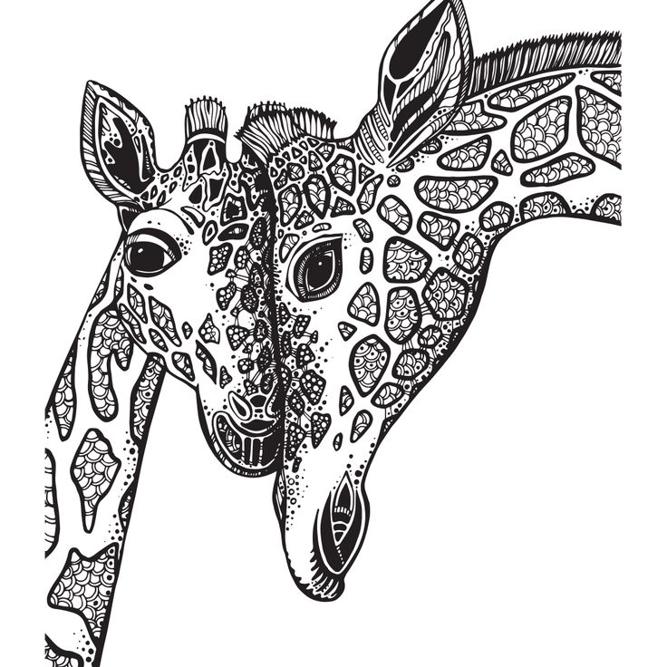 Adult Coloring Book Giraffe Sketch Coloring Page