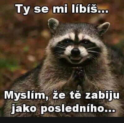 Nototo... | torpeda.cz - vtipné obrázky, vtipy a videa