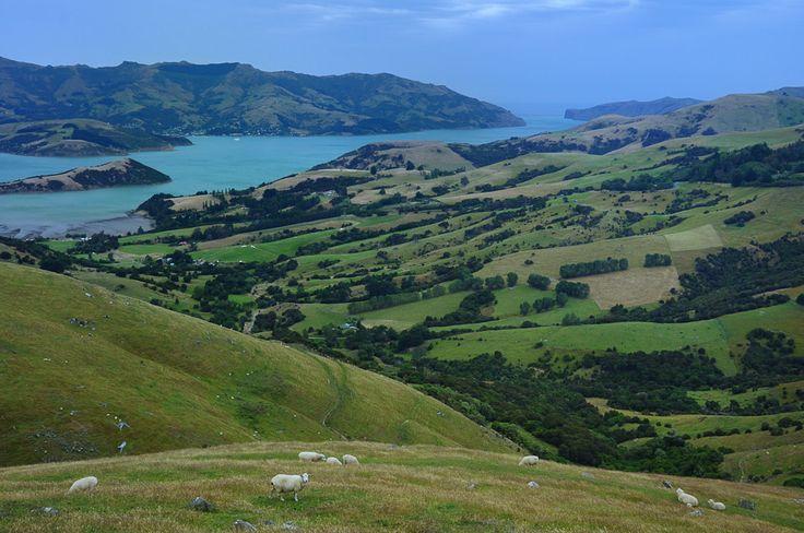 Banks Peninsula | New Zealand | 2014 http://www.honza-libor.cz/novy-zeland-2014