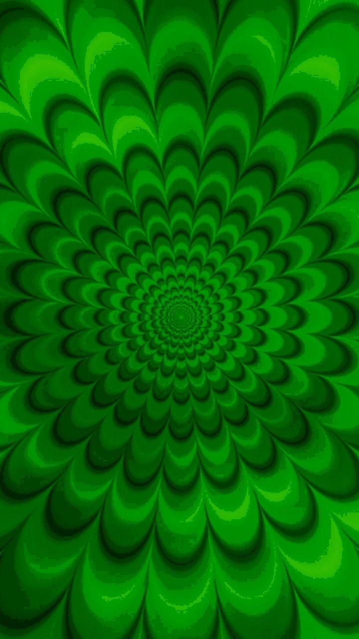 Pin Di Lucrezyabi Su My Green Nel 2019 Verde