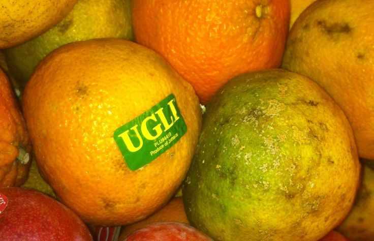 FOOD TERMS YOU MAY NOT KNOW ARE TRADEMARKED <> Ugli Fruit <> The ugli fruit, which you've probably seen in your local supermarket during the winter months, is a hybrid of a grapefruit, Seville orange, and tangerine. The name is a registered trademark of Cabel Hall Citrus Company, which was the first to add orange to a traditional tangelo formula or grapefruit and tangerine.  - Photo Modified: Flickr / romana klee / CC BY-SA 4.0