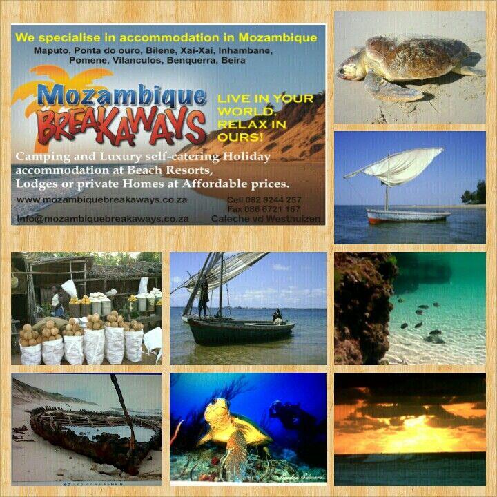 Www.mozambiquebreakaways.co.za