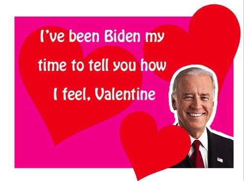 """Joe Biden IS my celebrity sex list"" -Leslie Knope"
