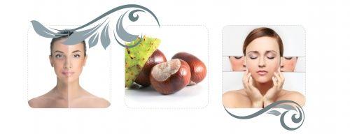 BELICO Vadgesztenyés Couperosa kezelés alkalmas a hajszálértágulatokra hajlamos bőr kezelésére.  http://www.xshapestudio.hu/belico-arckezelesek