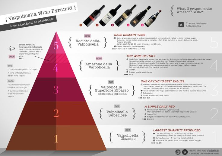 "[infographic] ""Valpolicella Wine Pyramid - from Classico to Amarone"" Jun-2013 by Winefolly.com"