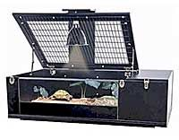 reptology tortoise palace