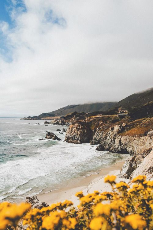 Big Sur, California. Picture by Sam Alive.