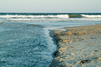 Pet-Friendly North Myrtle Beach Oceanfront Hotels