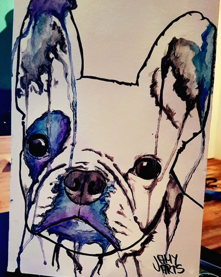 Some new watercolour stuff. Hope you like it :) #frenchbully #french #frenchbulldog #bulldog #französischebulldogge #watercolor #watercolour #art #aquarell #aquarelle #watercolorart #aquarellart #dog #doglove #tattoo #tattooart #jamyarts