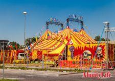 14 августа в Алматы стартует гастрольный тур цирка-шапито Демидовых.Цирк-шапито это передвижная конструкция, которая превращается в огромный шатер всего за несколько часов. Диаметр шапито 35 метров, высота 13 метров, вес ...