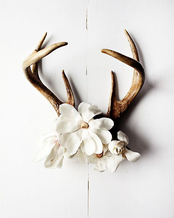 I LOVE this idea. It's earthy its subtle and it beautiful. This is a perfect piece to accent any room! You can also substitute antlers for antler-like branches like I did.