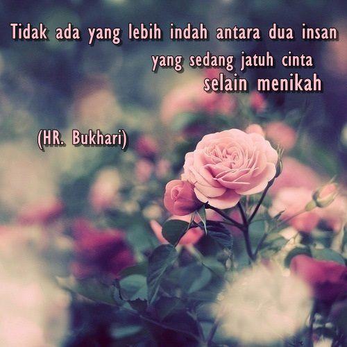 :) Kelembutan warna bunga ini seakan berkata, jagalah aku! *as a woman* :)