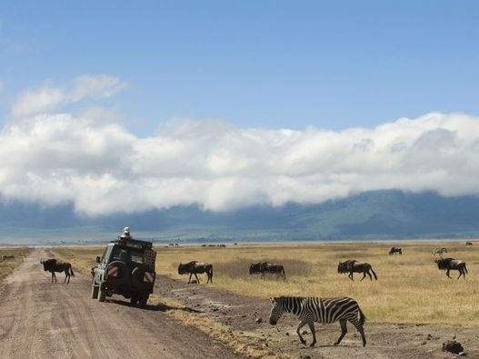Ngorongoro Crater. We went on a 6-week safari in East Africa many, many years ago. This was the first place I saw rhinos....