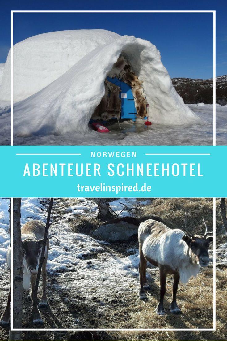 Das Schneehotel in Kirkenes im hohen Norden Norwegens ist ein magischer Ort. In jedem Zimmer gibt es einzigartige Eisskulpturen. Außerdem kannst du dort mit Hundeschlitten fahren, mit Welpen kuscheln und die niedlichen Rentiere beobachten.